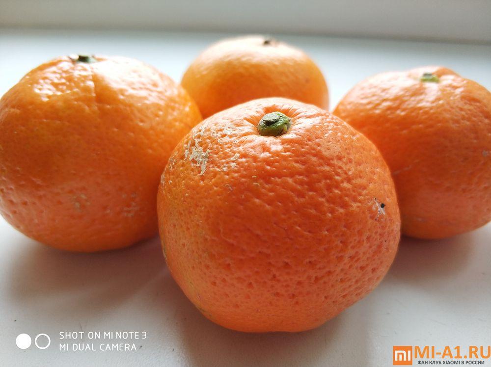 Пример фото с камеры Xiaomi Mi Note 3 - мандарины